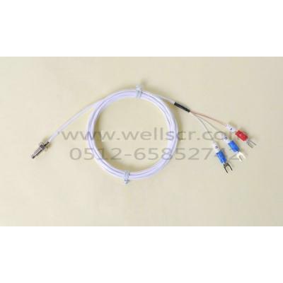 WR11 螺帽式(螺钉式) 高精度热电阻